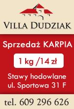 Villa Dudziak 2020